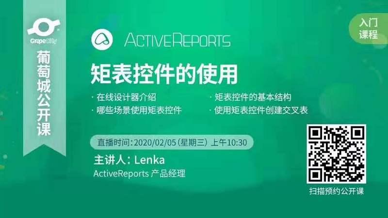 ActiveReports 矩表控件的使用